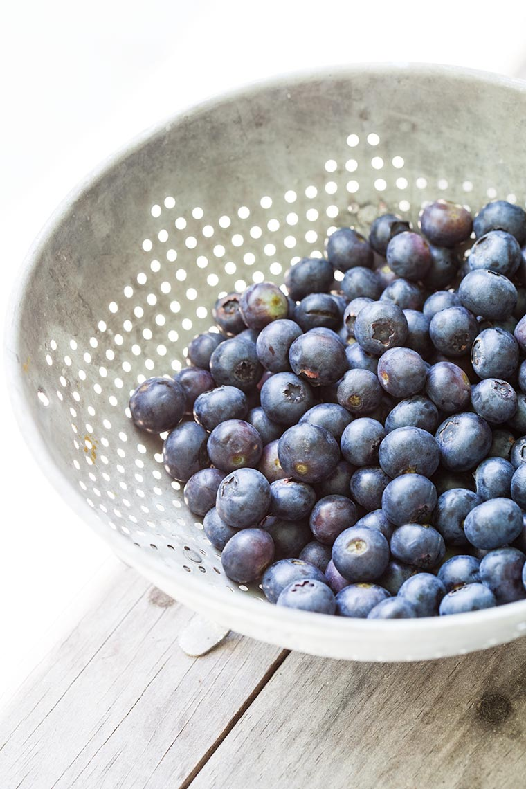 hbrownsphotography-blueberries-web